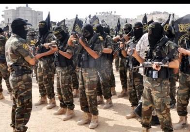 Darwin award 2017: 12 morti in Iraq alla festa d'addio per un kamikaze