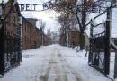 La memoria tra antisemitismo e negazionismo, uno sguardo alla storia
